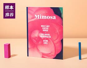 Mimosa杂志设计